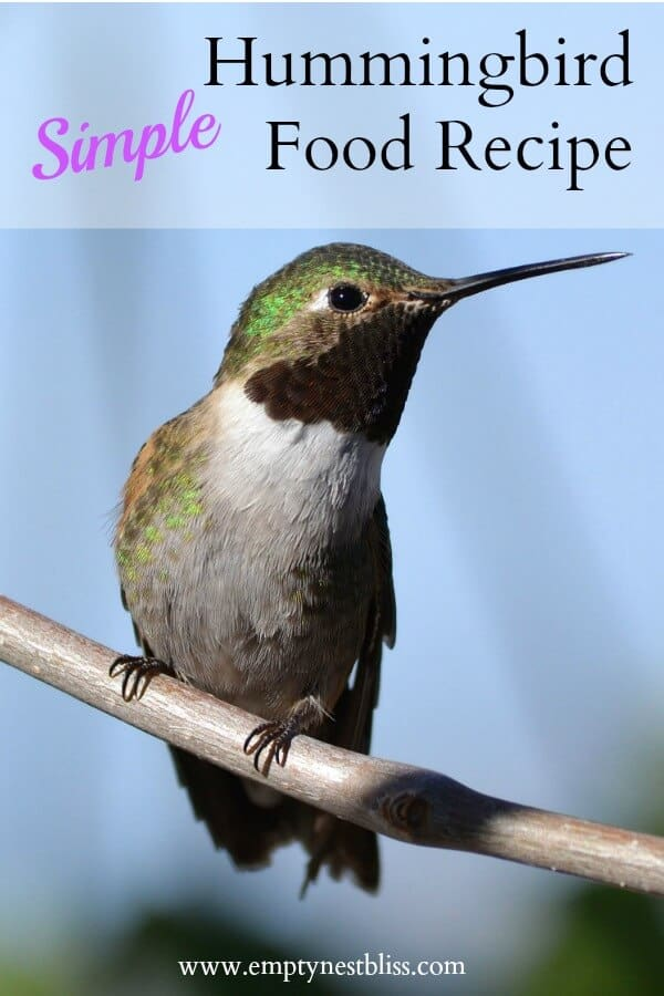 Great recipe for hummingbird feeder mix.