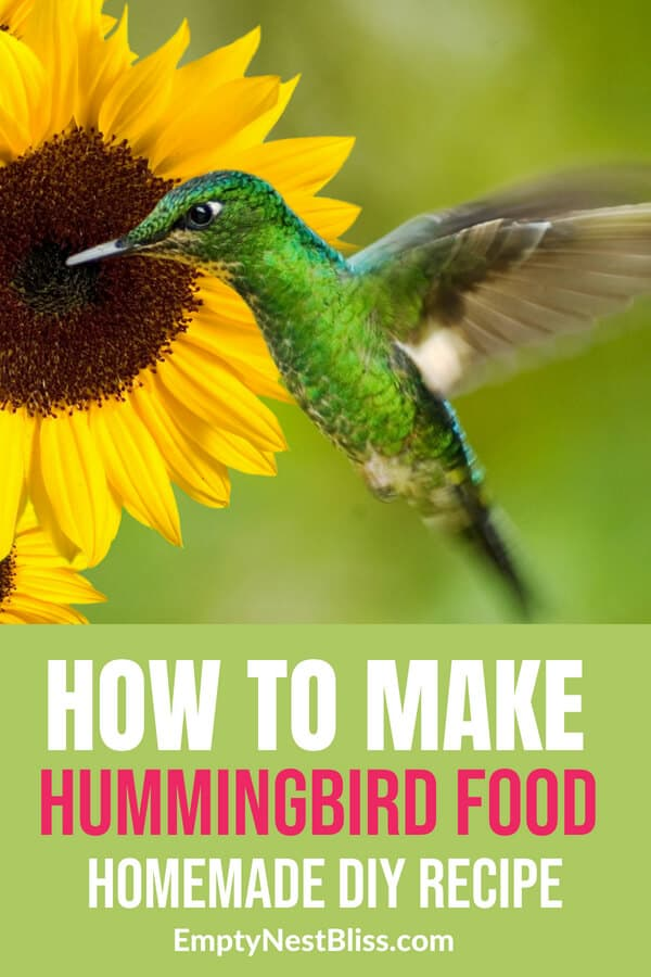 Homemade hummingbird food recipe to mix yourself! Such an easy DIY! #hummingbird #gardens #gardening
