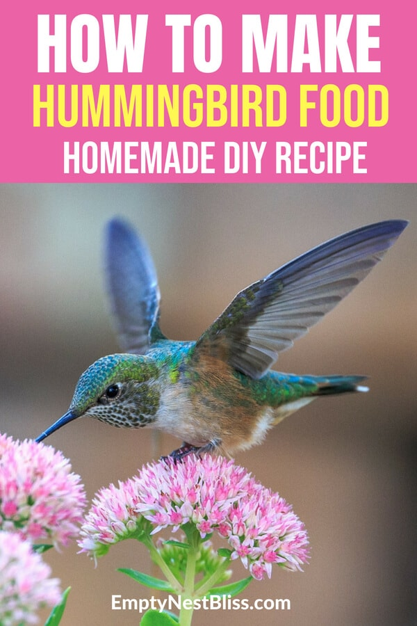 Homemade DIY hummingbird food recipe to mix yourself!    #hummingbird #gardens #gardening