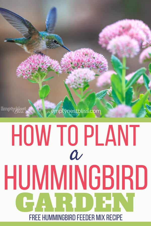 Gardening and garden planning for hummingbirds. | Hummingbird feeder | hummingbird food | #gardenideas #gardens #hummingbird #gardening