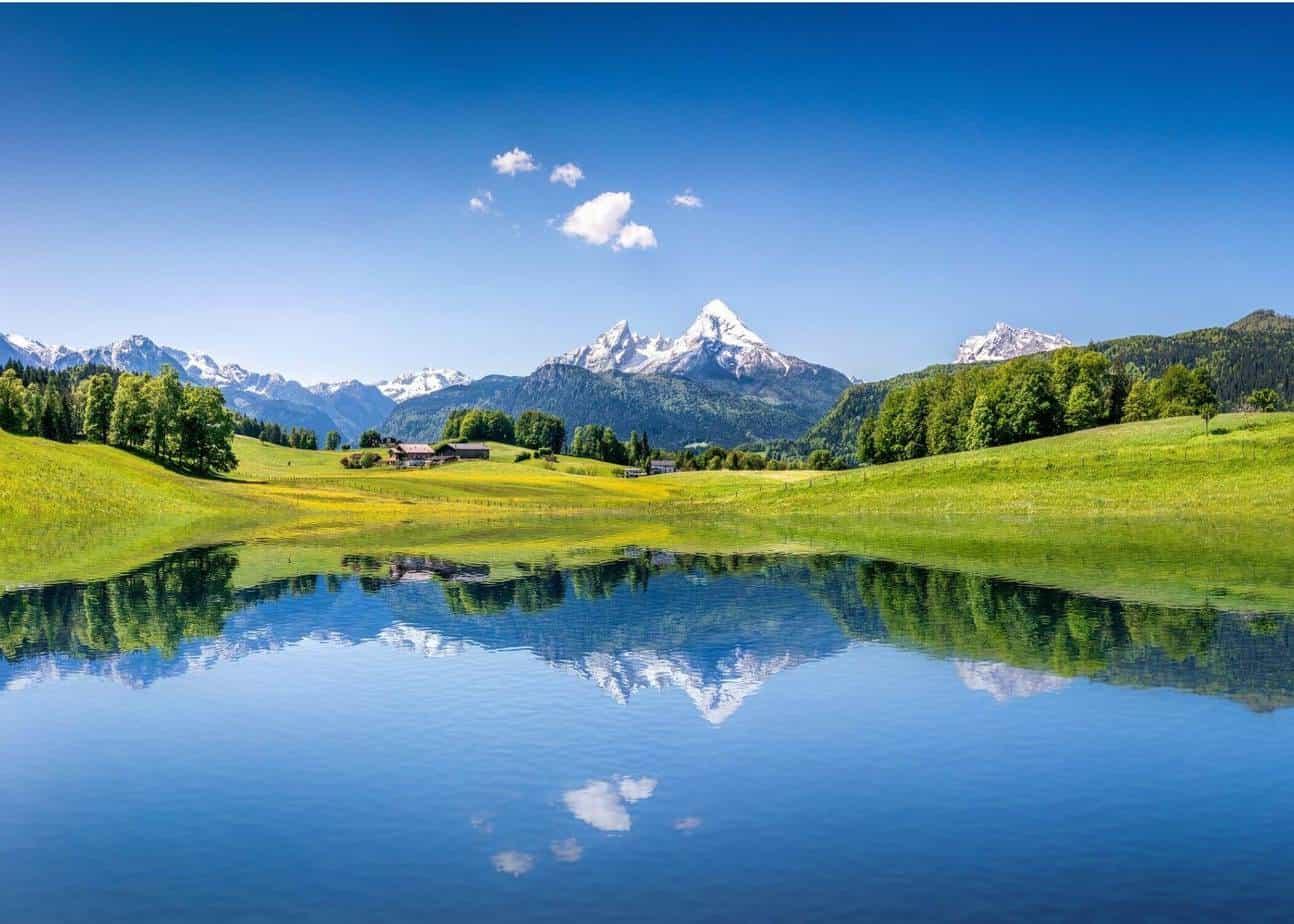 Austrian scene