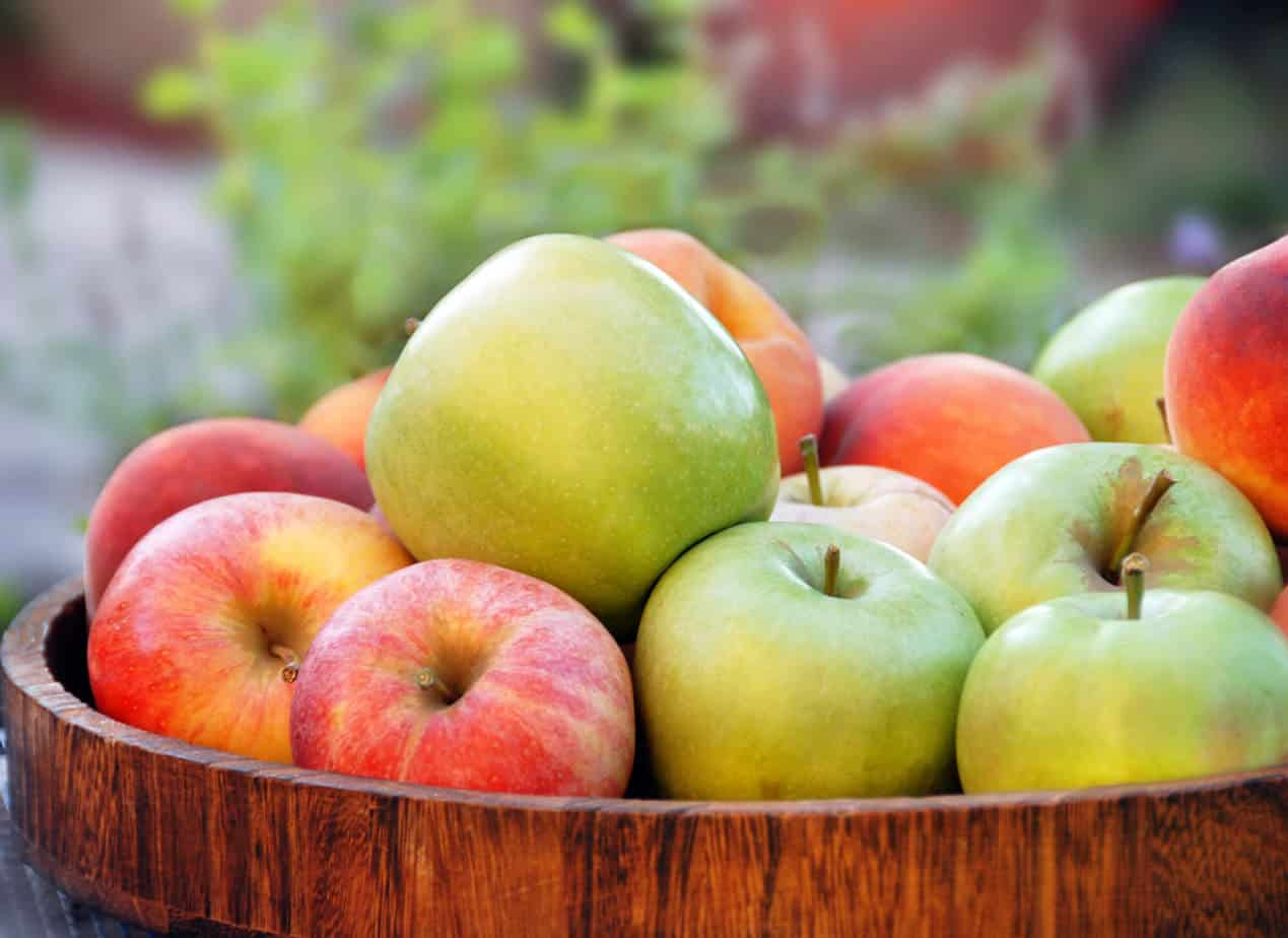 Fruit like apples, blueberries and bananas should be part of a diet to heal your gut.