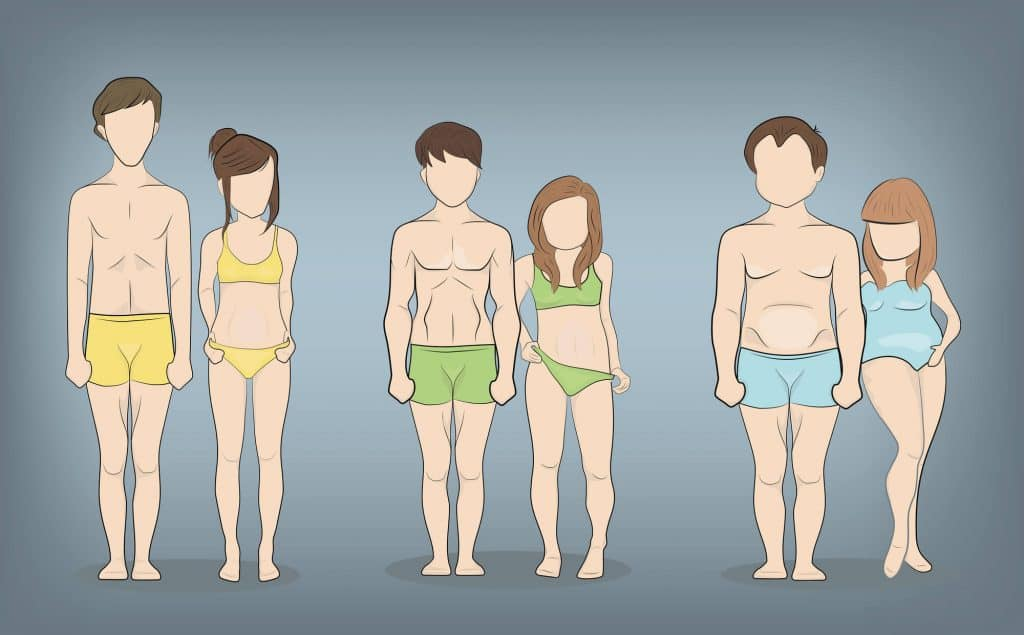Ectomorph, Mesomorph and Endomorph body types