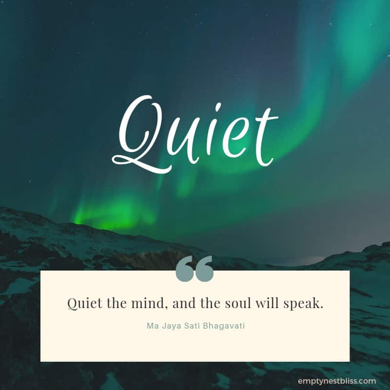 Quote:  quiet the mind and the soul will speak.  By Ma Jaya Sati Bhagavati