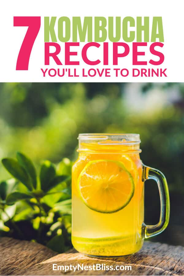 Kombucha recipes for beginners.